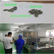 瓜子微波烘干殺菌設備