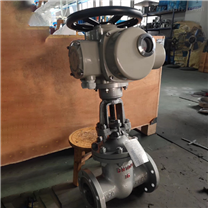 Z941H-16C DN250电动法兰铸钢闸阀