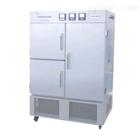 YP-250药品稳定性试验箱