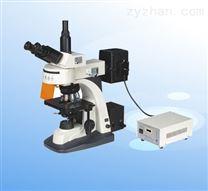 落射荧光显微 XSP-63B