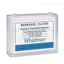 Whatman聚碳酸酯滤膜