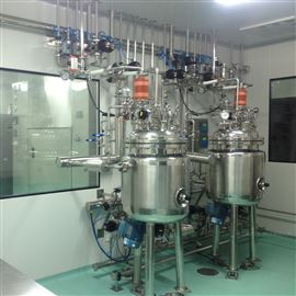 QGCJG-500磁力搅拌配液罐