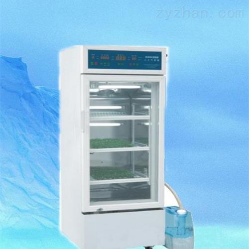 RXZ-158A人工气候箱