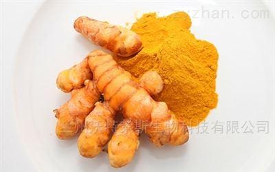 姜黄素95 姜黄提取物 食品级 着色剂