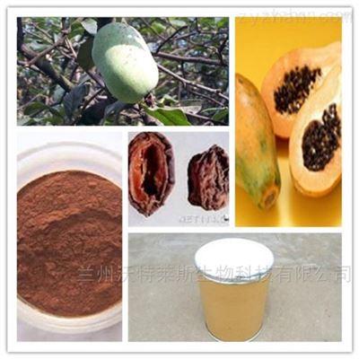 木瓜蛋白酶 优质食品级木瓜活性蛋白