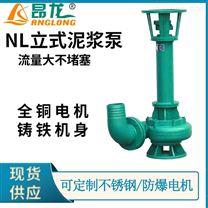 NL150-15立式污水泵 淤泥清理泥浆泵