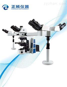 多人共览显微镜ZXS-5M