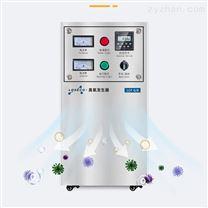源頭貨源 制藥廠水處理5g臭氧消毒機