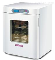 上海智城ZXDP-B2120隔水式电热恒温箱