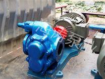 上海微型移動式齒輪泵