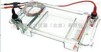 HS 120現貨 HS 120多用途水平電泳槽北京廠家(核酸電泳槽)