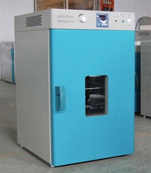 立式鼓风干燥箱DHG-9240A