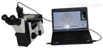 M-5XC倒置金相显微镜